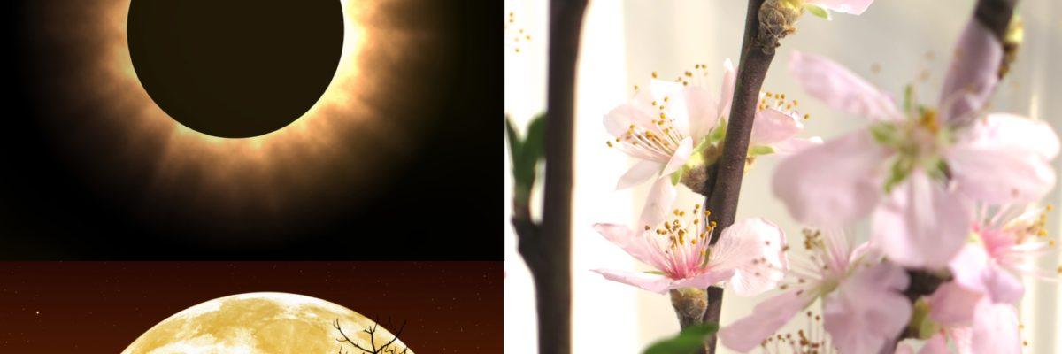 Nytt år starter med trippel bonanza: solformørkelse, vårjevndøgn og supermåne!
